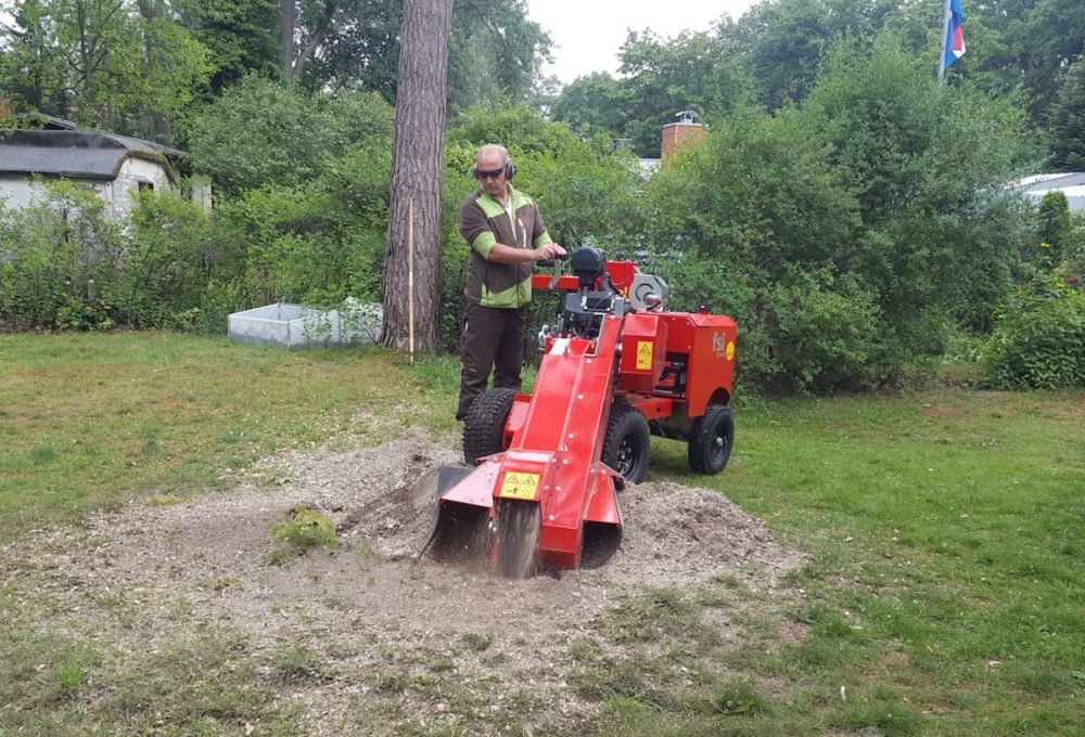 Stubbenfräsungen Baumpflege