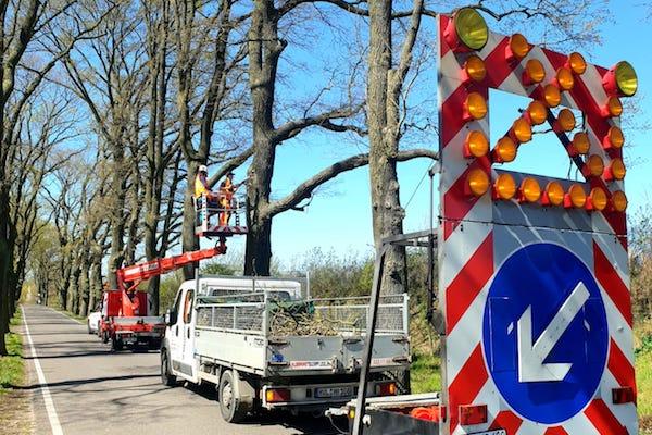 Baumpflege Absicherung